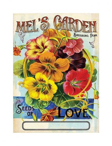 703-1441577300_MELSGARDEN_seedpacket