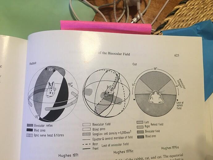 Sample Visual fields