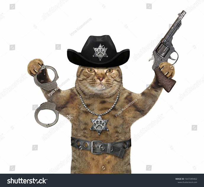 stock-photo-the-beige-cat-policeman-is-wearing-in-a-black-cowboy-hat-a-police-badge-around-his-neck-and-a-1647289462