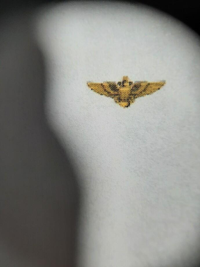 Navy Wings