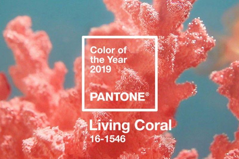 living-coral-pantone-2019_2018-12-06_11-56-59