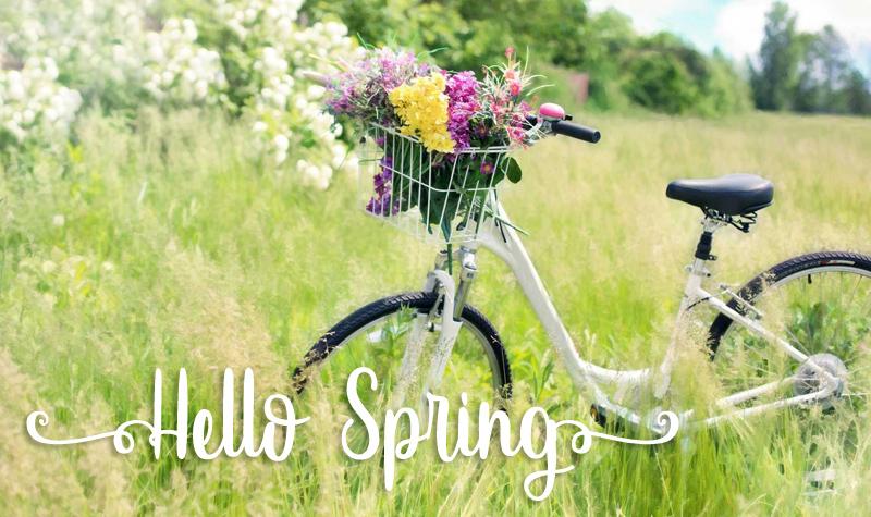 spring19q